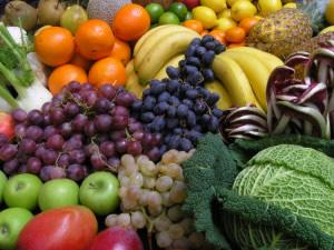 raw food diet center