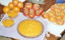 raw persimmon pie