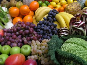 raw food diet center